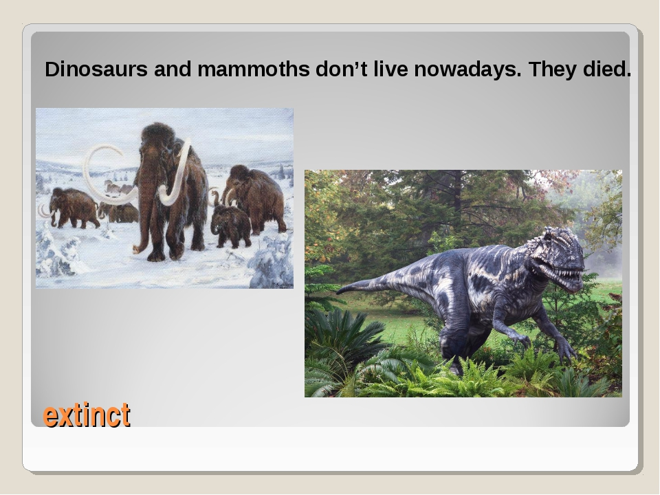 extinct Dinosaurs and mammoths don't live nowadays. They died.