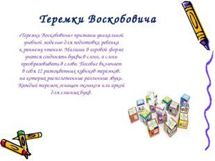 Теремки Воскобовича «Теремки Воскобовича» признаны уникальной учебной моделью