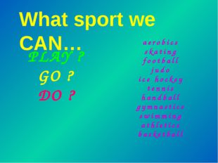 What sport we CAN… aerobics skating football judo ice hockey tennis handball