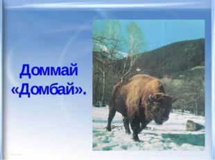 Доммай «Домбай».