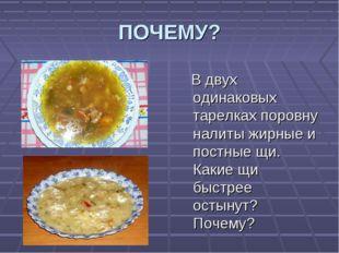 ПОЧЕМУ? В двух одинаковых тарелках поровну налиты жирные и постные щи. Какие