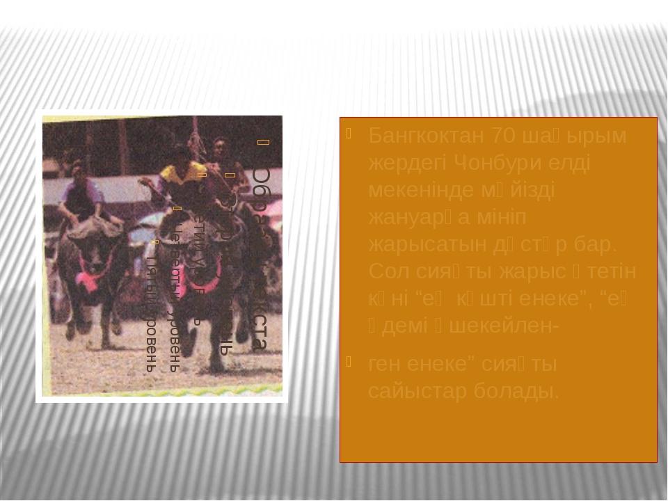 Бангкоктан 70 шақырым жердегі Чонбури елді мекенінде мүйізді жануарға мініп...