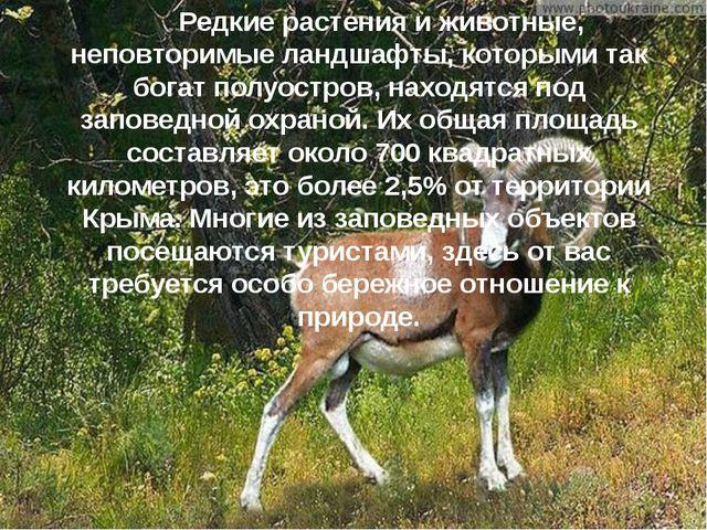 Редкие растения и животные, неповторимые ландшафты, которыми так богат полуо...