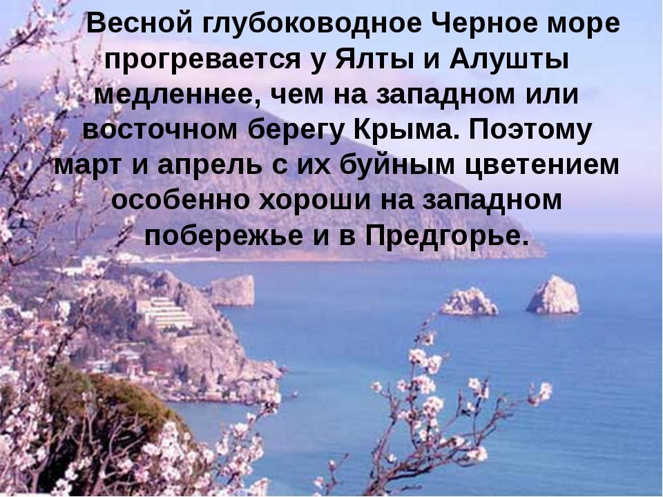 Весной глубоководное Черное море прогревается у Ялты и Алушты медленнее, чем...