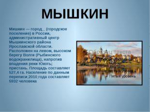 МЫШКИН Мишкин — город (городское поселение) в России, административный центр