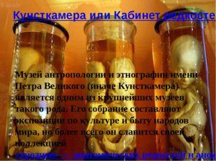 Кунсткамера или Кабинет редкостей Музей антропологии и этнографии имени Петра
