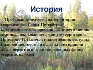 История Пребывание человека на территории современного Санкт-Петербурга просл
