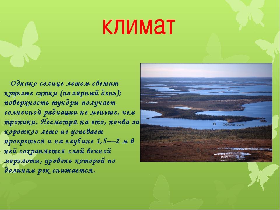 климат Однако солнце летом светит круглые сутки (полярный день); поверхность...