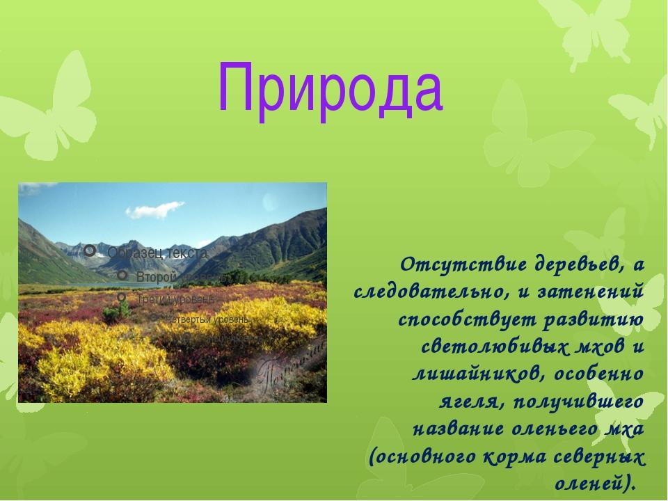 Природа Отсутствие деревьев, а следовательно, и затенений способствует развит...