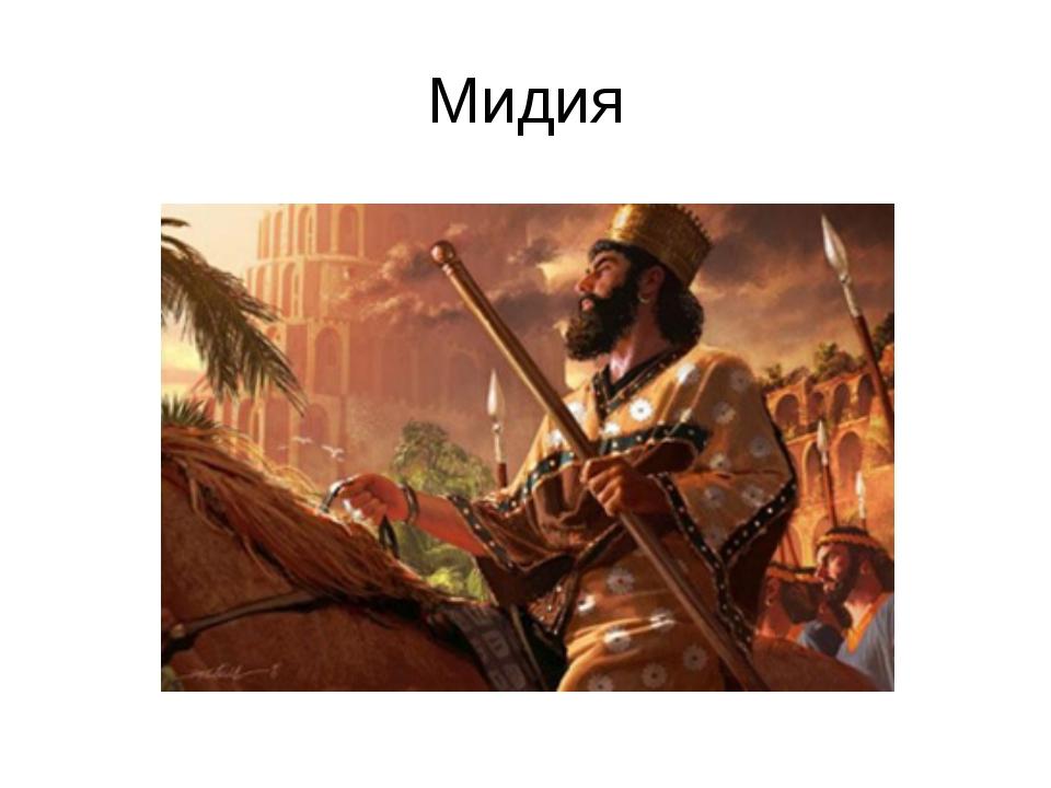 Мидия