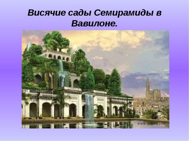 Висячие сады Семирамиды в Вавилоне.