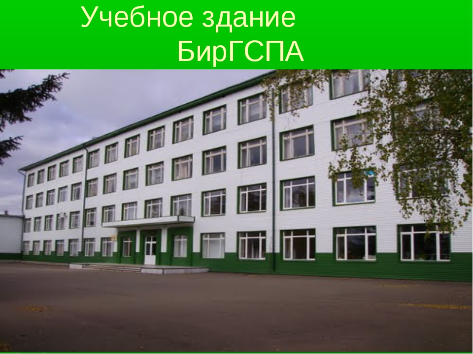 Учебное здание БирГСПА