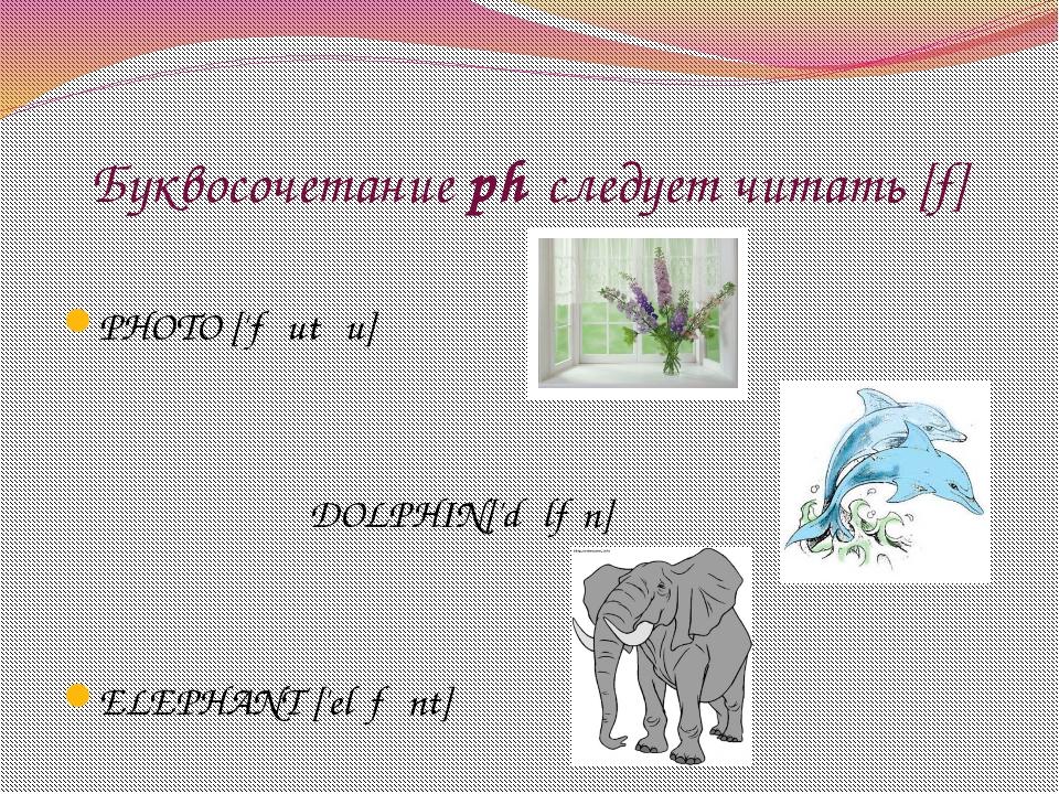 Буквосочетание ph следует читать [f] PHOTO ['fəutəu] DOLPHIN['dɔlfɪn] ELEPHA...