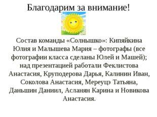 Благодарим за внимание! Состав команды «Солнышко»: Кипяйкина Юлия и Малышева