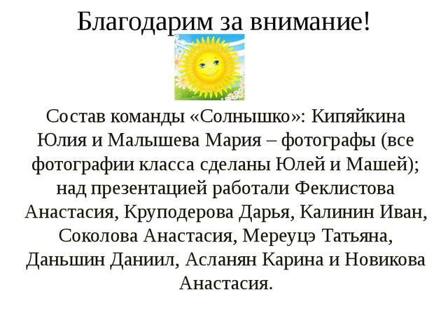 Благодарим за внимание! Состав команды «Солнышко»: Кипяйкина Юлия и Малышева...