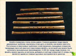 Флейта появилась очень-очень давно. Сначала древние люди нашли деревянные тр