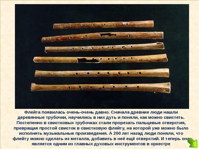Флейта появилась очень-очень давно. Сначала древние люди нашли деревянные тр...