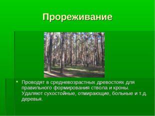 Прореживание Проводят в средневозрастных древостоях для правильного формирова