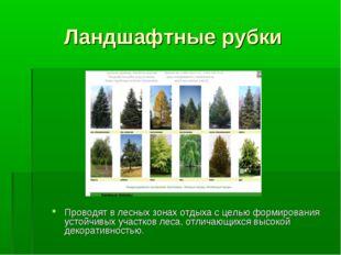 Ландшафтные рубки Проводят в лесных зонах отдыха с целью формирования устойчи