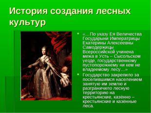 История создания лесных культур «…По указу Ея Величества Государыни Императри