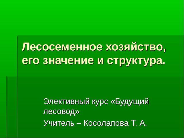 Лесосеменное хозяйство, его значение и структура. Элективный курс «Будущий ле...