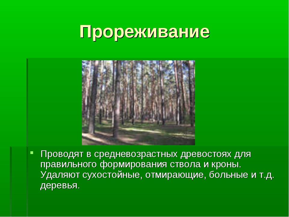 Прореживание Проводят в средневозрастных древостоях для правильного формирова...