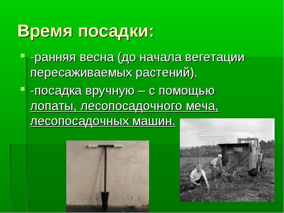 Время посадки: -ранняя весна (до начала вегетации пересаживаемых растений). -...