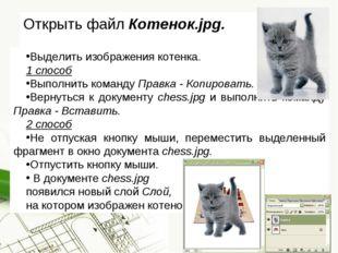Открыть файл Котенок.jpg. Выделить изображения котенка. 1 способ Выполнить ко