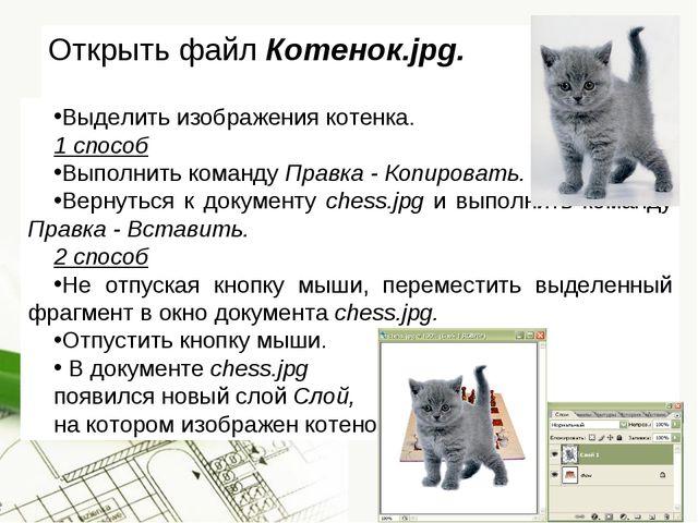 Открыть файл Котенок.jpg. Выделить изображения котенка. 1 способ Выполнить ко...