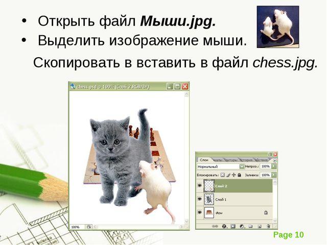 Открыть файл Мыши.jpg. Выделить изображение мыши. Скопировать в вставить в фа...