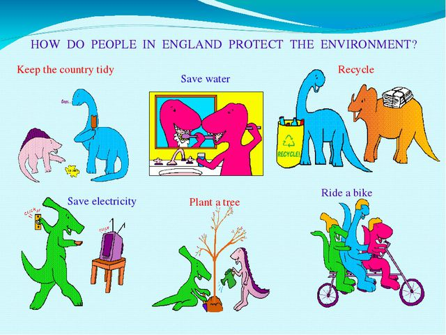 HOW DO PEOPLE IN ENGLAND PROTECT THE ENVIRONMENT? Keep the country tidy Save...