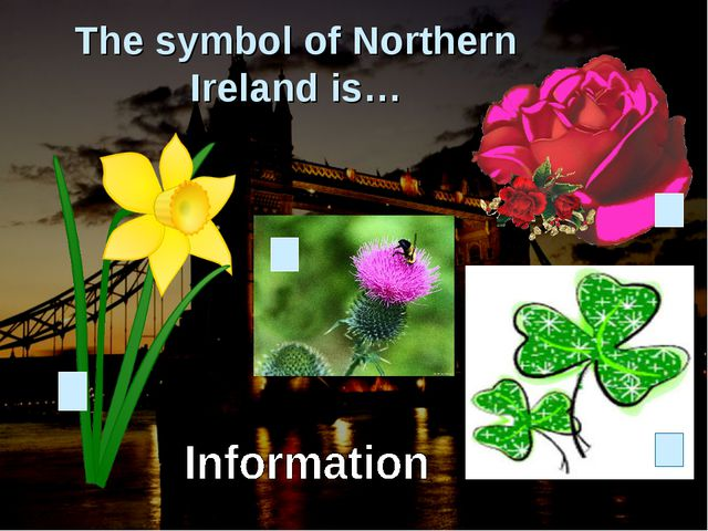 The symbol of Northern Ireland is…