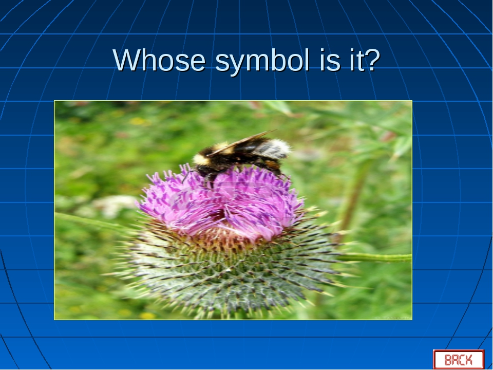 Whose symbol is it?