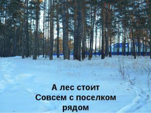 А лес стоит Совсем с поселком рядом