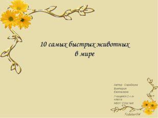 10 самых быстрых животных в мире Автор: Сарайкина Виктория Евгеньевна Учащаяс