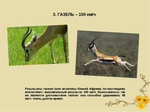 3. ГАЗЕЛЬ – 105 км/ч Результаты газели (или антилопы Южной Африки) по-настоящ