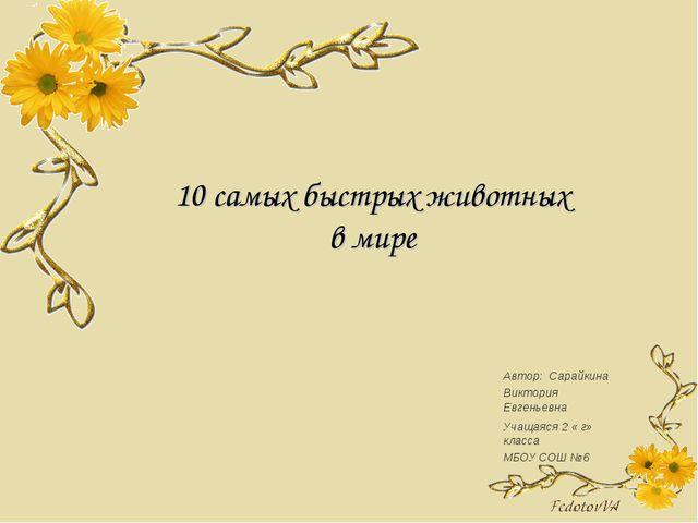 10 самых быстрых животных в мире Автор: Сарайкина Виктория Евгеньевна Учащаяс...