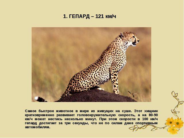 1. ГЕПАРД – 121 км/ч Самое быстрое животное в мире из живущих на суше. Этот х...