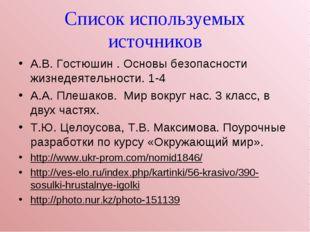 Список используемых источников А.В. Гостюшин . Основы безопасности жизнедеяте