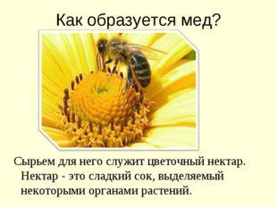 Как образуется мед? Сырьем для него служит цветочный нектар. Нектар - это сла