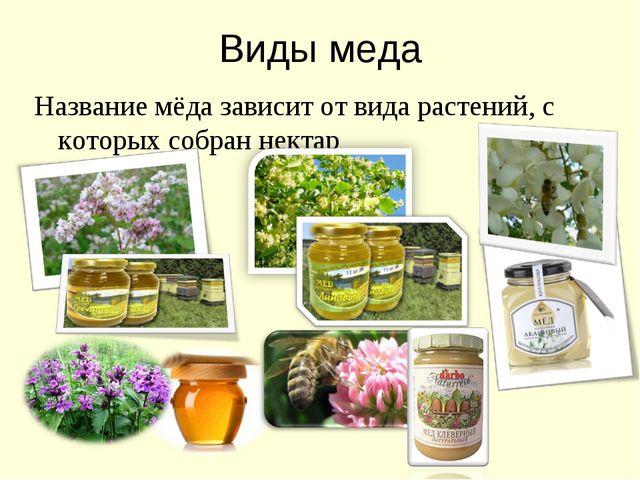 Виды меда Название мёда зависит от вида растений, с которых собран нектар