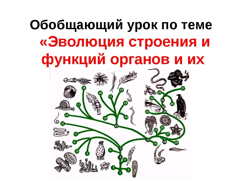 Обобщающий урок по теме «Эволюция строения и функций органов и их систем»
