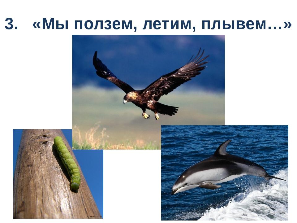 3. «Мы ползем, летим, плывем…»