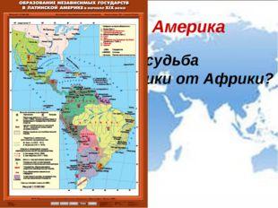 Латинская Америка Чем отличается судьба Латинской Америки от Африки?