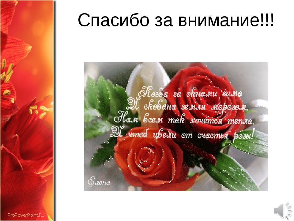 Спасибо за внимание!!! ProPowerPoint.Ru