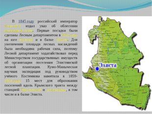 В 1845 году российский император Николай I издал указ об облесении калмыцкой