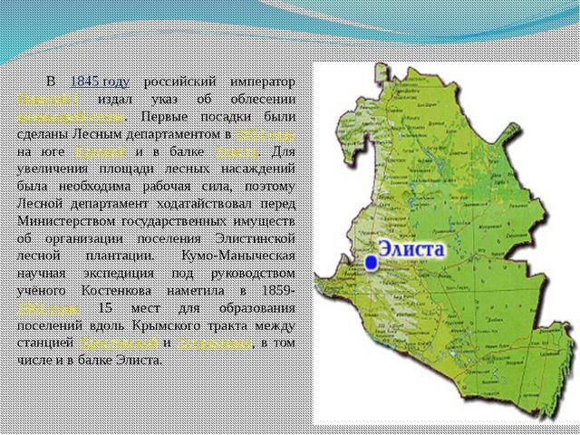 В 1845 году российский император Николай I издал указ об облесении калмыцкой...