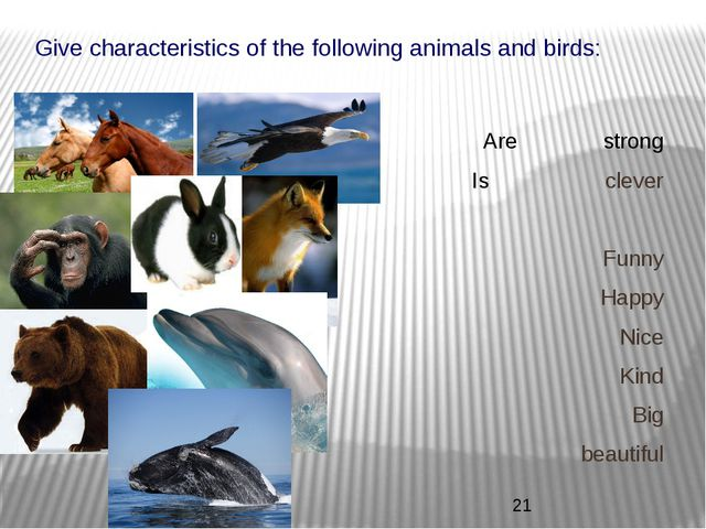 Give characteristics of the following animals and birds: Are strong Is clever...