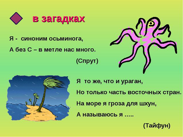 в загадках Я - синоним осьминога, А без С – в метле нас много. (Спрут) Я то ж...