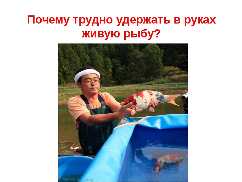 Почему трудно удержать в руках живую рыбу?